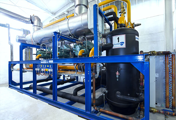 Refrigeration plant industrial refrigeration systems - newcold img10